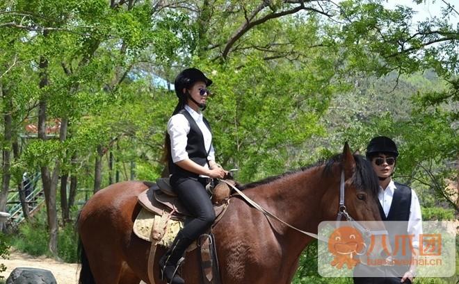 威海震琳体育休闲公园真人CS骑马v公园或特色柔道4大图片